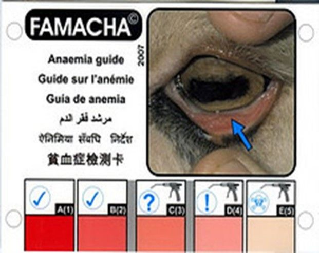 health_check_6.jpg